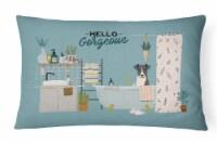 Smooth Fox Terrier in Bathtub Canvas Fabric Decorative Pillow - 12Hx16W