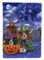 Cavalier Spaniel Halloween House Flag Canvas House Size - House Size