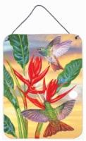 Buff Bellied Hummingbird Wall or Door Hanging Prints