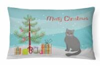 British Semi Longhair Cat Merry Christmas Canvas Fabric Decorative Pillow
