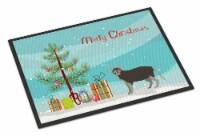 Lykoi #1 Cat Merry Christmas Indoor or Outdoor Mat 24x36