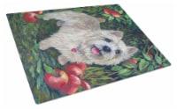 Norwich Terrier Apple Grove Glass Cutting Board Large - 12Hx15W