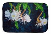 Carolines Treasures  FHC1006DDM Night Blooming Cereus by Ferris Hotard Dish Dryi