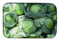 "Carolines Treasures  GAK1016DDM Cabbage by Gary Kwiatek Dish Drying Mat - 14  x 21"""