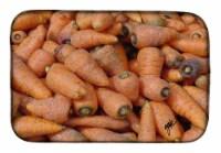 Carolines Treasures  GAK1017DDM Carrots by Gary Kwiatek Dish Drying Mat
