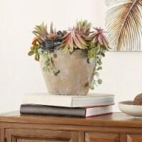 Faux Succulent Potted Plant - 1 unit