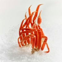 Snow Crab Clusters