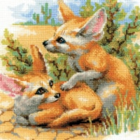 Riolis R1636 10 x 10 in. Desert Foxes Counted Cross Stitch Kit - 14 Count - 14