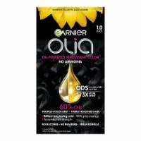 Garnier Olia 1.0 Black Permanent Hair Color