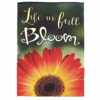 Dicksons M080081 13 x 18 in. Flag Print Life In Full Bloom Polyester Garden - 1