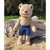 Bear Jean Shorts - One Size