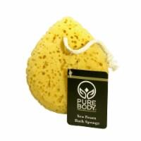 Pure Body Sea Foam Bath Sponge - 1 ct