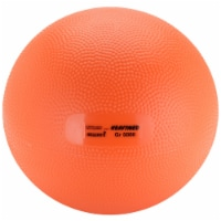 Gymnic Heavy Med 5 Exercise Ball