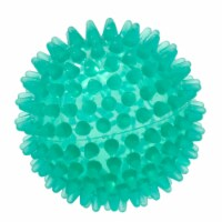 Gymnic Reflex Hedgehog Ball