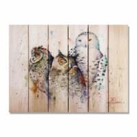 Day Dream HQ DCOT3324 33 x 24 in. Crousers Owl Trio Inside & Outside Cedar Wall Art - 1