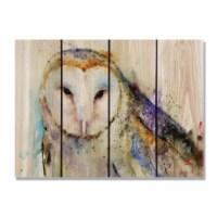 Day Dream HQ DCBO2216 22 x 16 in. Crousers Barn Owl Inside & Outside Cedar Wall Art - 1