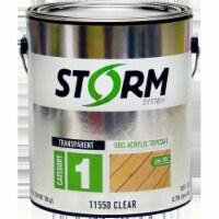 Storm 11550-1 1 gal Cat1 Transparent 100 Percent Acrylic Topcoat