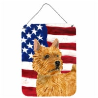 USA American Flag with Norwich Terrier Wall or Door Hanging Prints