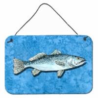 Fish - Trout Indoor Aluminium Metal Wall or Door Hanging Prints - 8HX12W