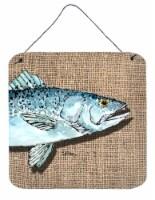 Fish Speckled Trout Aluminium Metal Wall or Door Hanging Prints