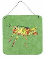 Grasshopper on Avacado Aluminium Metal Wall or Door Hanging Prints - 6HX6W