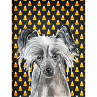Carolines Treasures  SC9536CHF Chinese Crested Halloween Candy Corn Flag Canvas - House Size