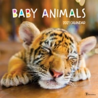 TF Publishing 2021 Baby Animals Wall Calendar