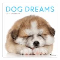 TF Publishing 2021 Wall Calendar – Dog Dreams
