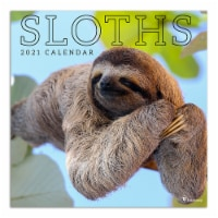 TF Publishing 2021 Sloths Wall Calendar