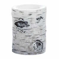 Sterno Home Flameless LED Birch Pillar Candle - White