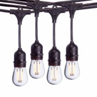 Sterno Home Commercial Dimmable Outdoor LED Edison Bulb String Lights - 24 ft