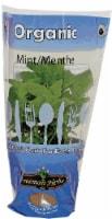 Freeman Herbs Organic Mint Potted