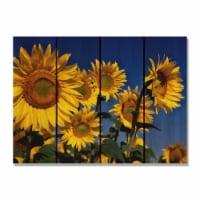 Day Dream SB2216 22 x 16 in. Sunny Bunch Inside & Outside Cedar Wall Art