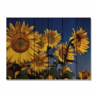 Day Dream SB3324 33 x 24 in. Sunny Bunch Inside & Outside Cedar Wall Art