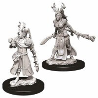 Dungeons And Dragons Female Human Druid Nolzur's Miniatures - 1 Unit