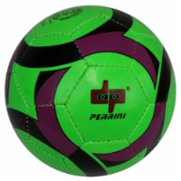 Shelter 13625 All Weather Indoor Outdoor Perrini Soccer Ball, Green, Black & Purple - Size5