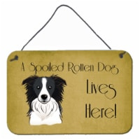 Border Collie Spoiled Dog Lives Here Wall or Door Hanging Prints - 8HX12W
