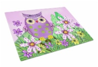 Carolines Treasures  PJC1096LCB Who is Your Friend Owl Glass Cutting Board Large