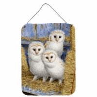 Carolines Treasures  ASA2076DS1216 Barn Owl Chicks Wall or Door Hanging Prints - 16HX12W