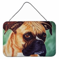 Boxer by Tanya and Craig Amberson Wall or Door Hanging Prints - 8HX12W