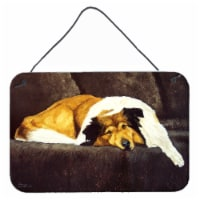 Collie by Tanya and Craig Amberson Wall or Door Hanging Prints - 8HX12W