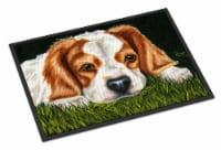Cavalier Spaniel in the Grass Indoor or Outdoor Mat 24x36