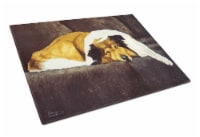 Collie by Tanya and Craig Amberson Glass Cutting Board Large - 12Hx15W