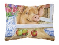 Pig trying to reach the Apple in the Window Fabric Decorative Pillow - 12Hx16W