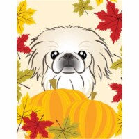 Carolines Treasures  BB2027CHF Pekingese Thanksgiving Flag Canvas House Size