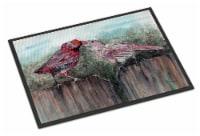 Carolines Treasures  8981MAT Red Bird Feeding Indoor or Outdoor Mat 18x27