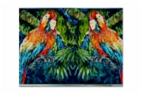 Carolines Treasures  MW1216PLMT Parrots Yo Yo Mama Fabric Placemat - Large
