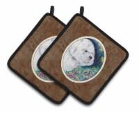 Carolines Treasures  7225PTHD Bichon Frise Pair of Pot Holders - Standard