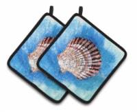Carolines Treasures  8008PTHD Scallop Sea Shell Pair of Pot Holders