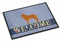 Carolines Treasures  BB5562JMAT Leonberger Welcome Indoor or Outdoor Mat 24x36 - 24Hx36W